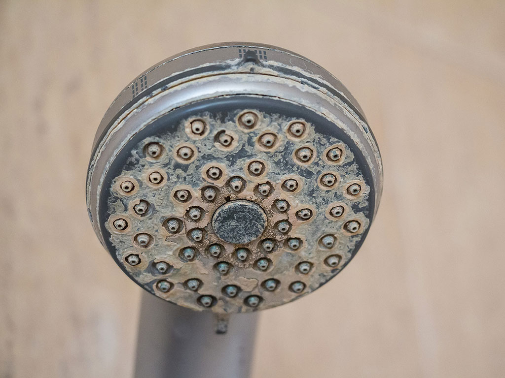 Hard Water Buildup Plumbing Issues Shower Head Buildup